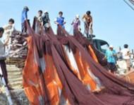 Phát triển bền vững nghề cá quy mô nhỏ