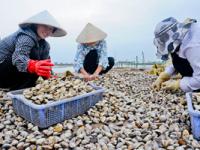 Quản lý tài nguyên vùng ven biển