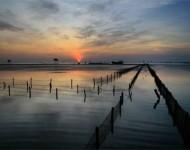 Thái Bình chung tay giữ sạch môi trường biển