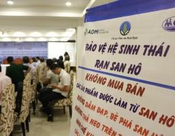 Chuỗi sự kiện truyền thông: Bảo vệ hệ sinh thái rạn san hô, giảm thiểu đánh bắt bất hợp pháp và thúc đẩy đồng quản lý tại khu vực LMMA Vịnh Quy Nhơn